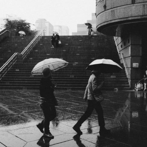 Logo Eaux pluviales en milieu urbain : un portage politique s'impose