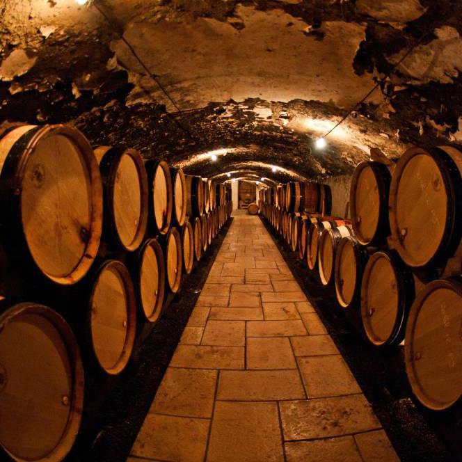Image Comment choisir une cave à vin ?